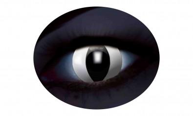 Motivlinsen UV flash black cat  2 Stck  Jahreslinsen